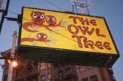 Owl_treee